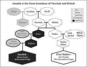 amalek.lineage