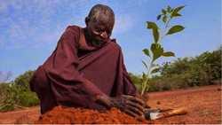 Khulu Reinfirst Manyuka est un Zimbabwéen qui est mort de faim pour avoir voulu imiter le jeûne de Jésus pendant 40 jours.