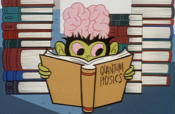 Les cerveaux humains ne sont pas exceptionnellement larges