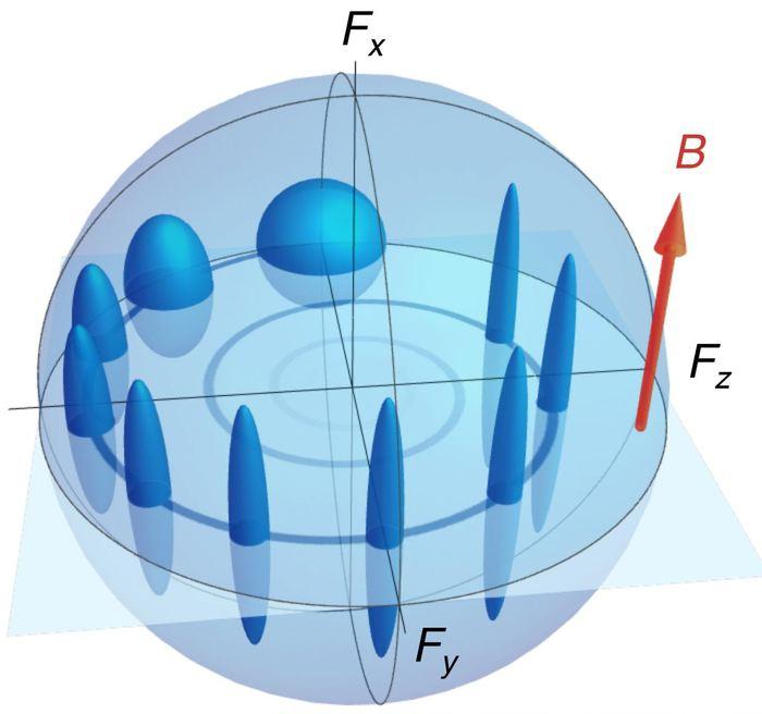 L'évolution d'un spin et de son indétermination à mesure qu'ils orbitent à cause d'un champ magnétique. L'indétermination, initialement égale dans toutes les directions, est comprimé dans un composant hors-plan en offrant une précision optimale et équivalent aux 2 composants sur le plan - Crédit : ICFO