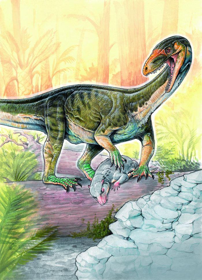 Les chercheurs rapportent la découverte d'un des plus anciens cousins des dinosaures avec le Teleocrater rhadinus, un lézard d'environ 1,8 mètre.