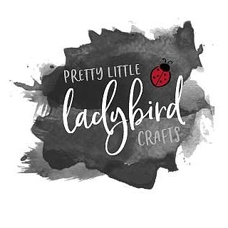 Pretty Little Ladybird Crafts