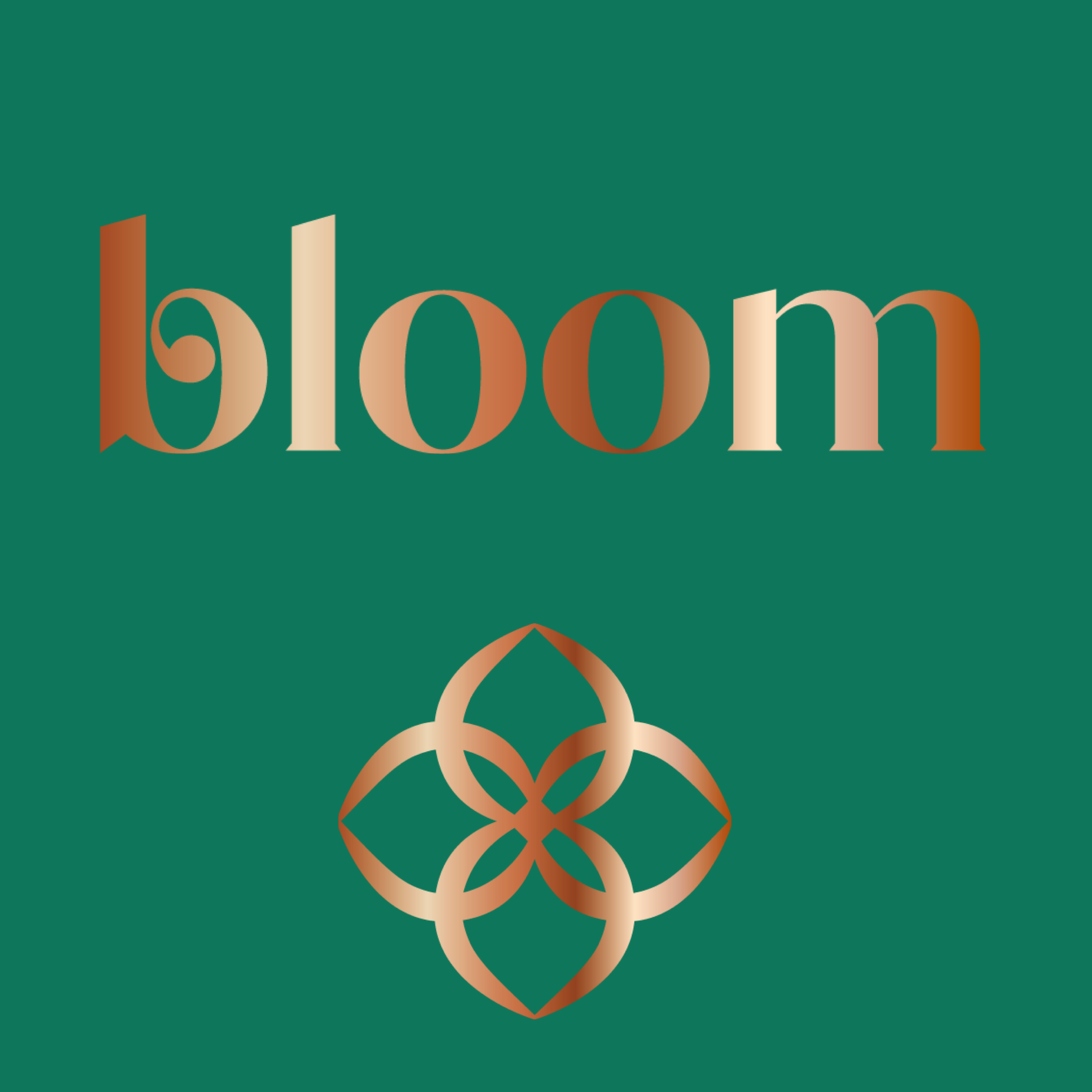 Bloom lifestyle salon