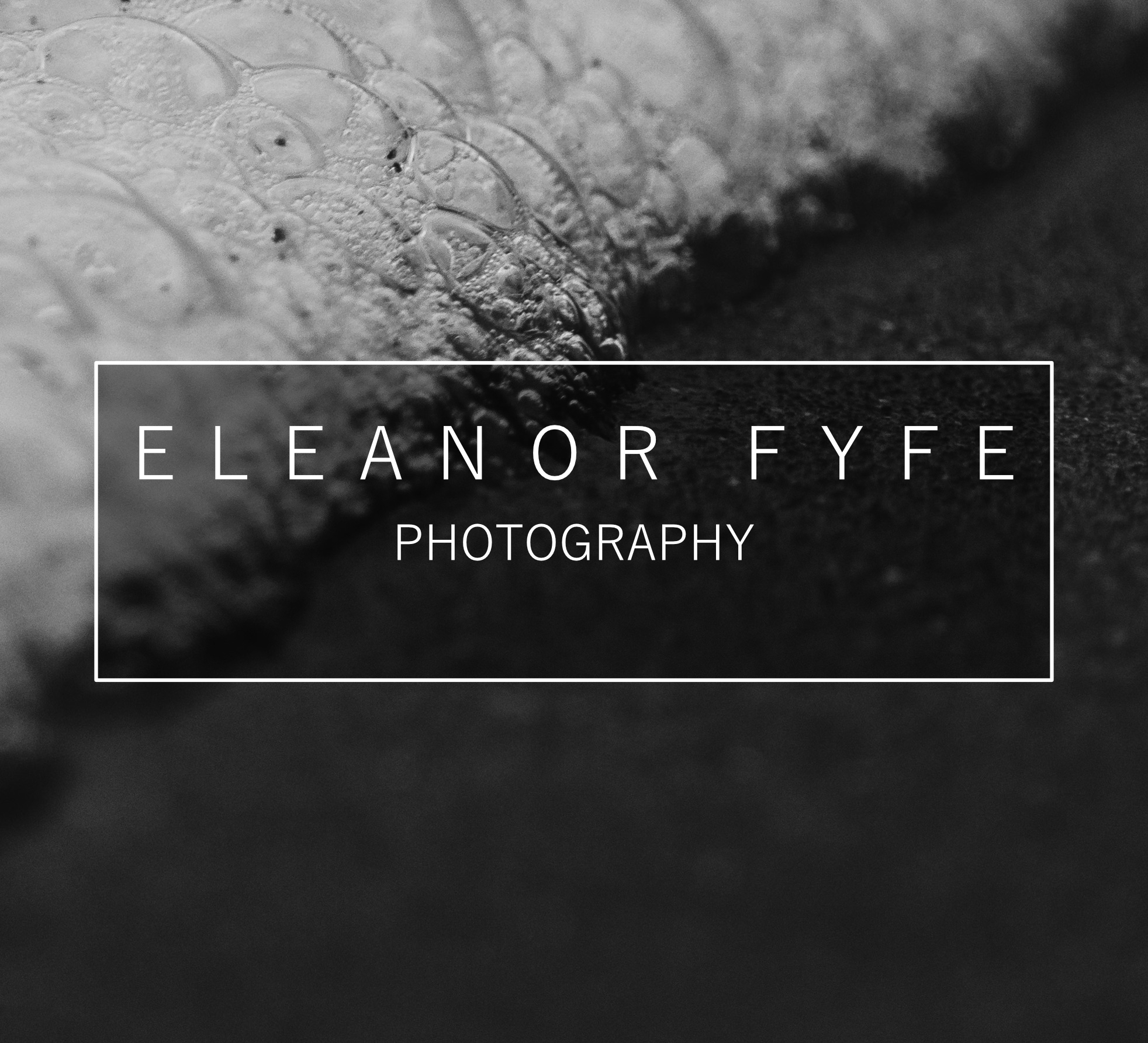 Eleanor Fyfe Photography