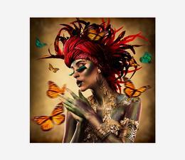 Butterfly_3
