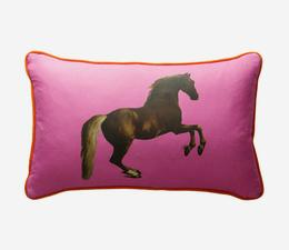 national_gallery_whistlejacket_pink_cushion_front_ACC2744_