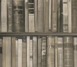 wallpaper_library_stone