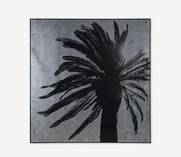 Palm_Tree_Square_Front