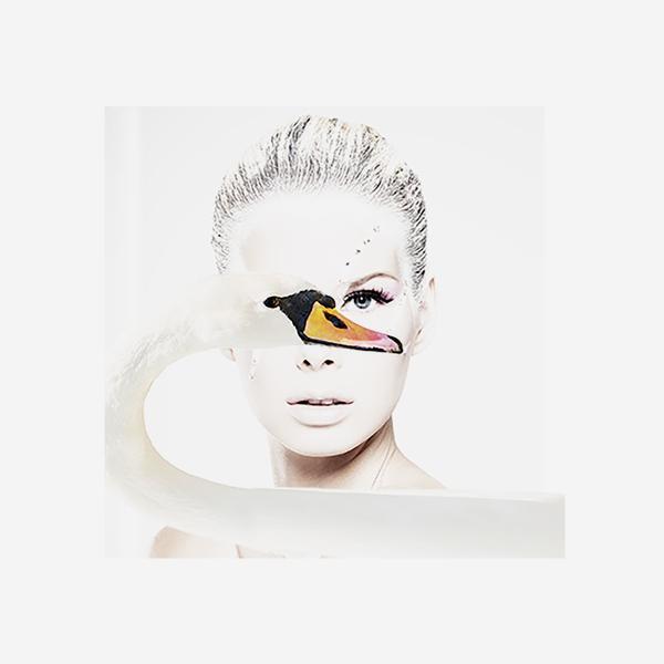 Swan_Eye