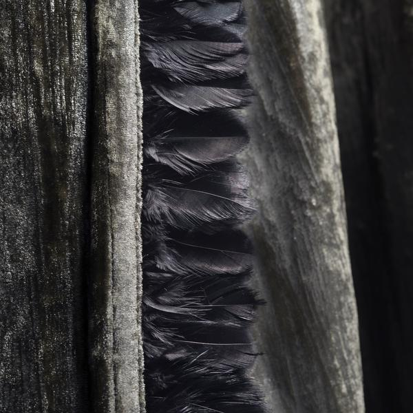 Feather_Black_Trim