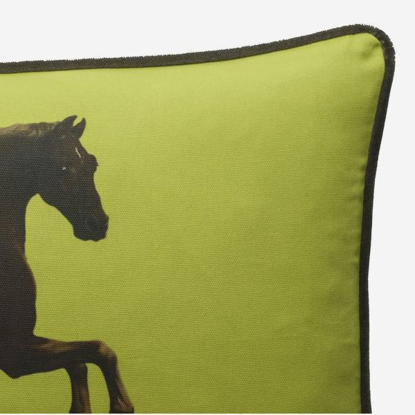 national_gallery_cushion_whistlejacket_lime