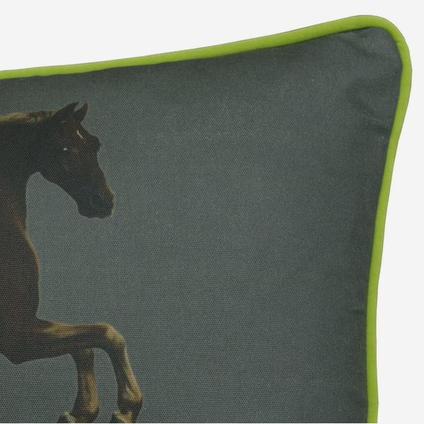 national_gallery_cushion_whistlejacket_charcoal