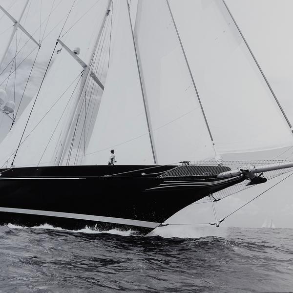 Sail_Away_ACC2971_