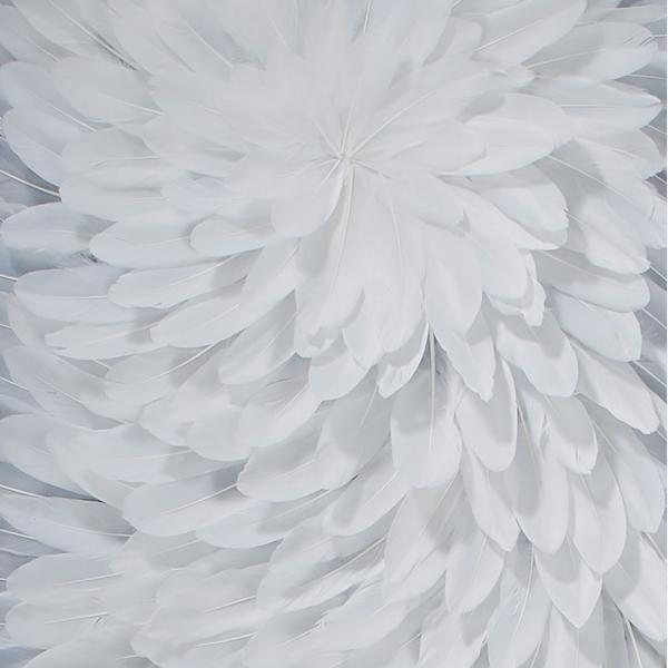 Wings_ACC3088