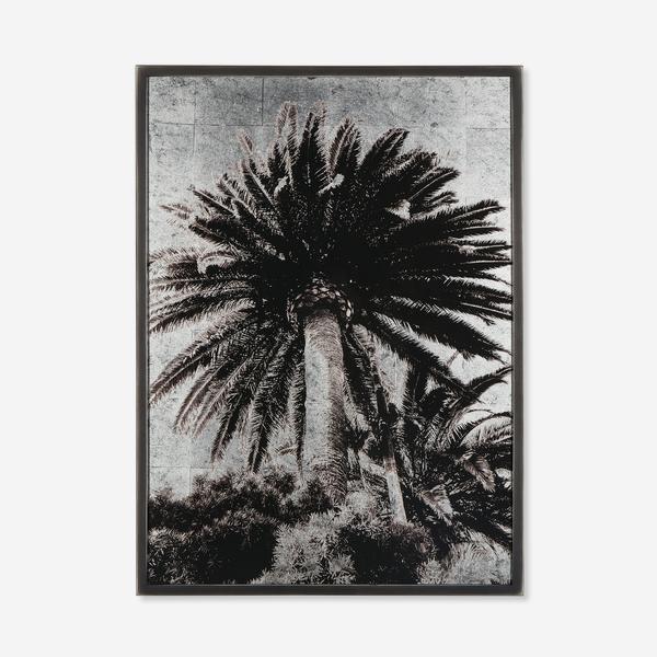 Venice_Palm_Artwork_Front