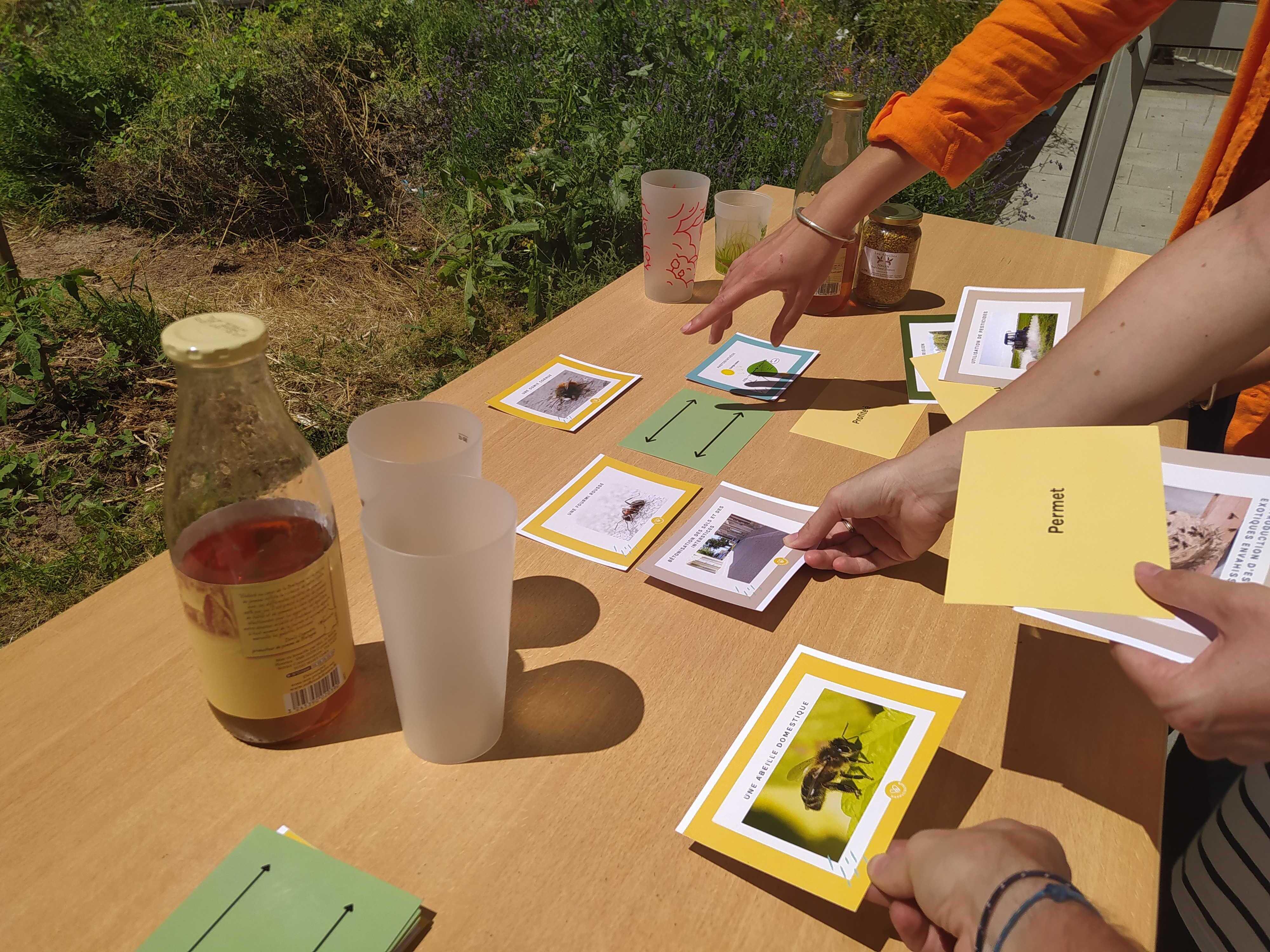 """Atelier-apéro """"Découvrir et agir pour la biodiversité urbaine"""""""