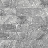 Regency 12 x 24 Carbon Variation