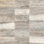 Silver Ash 12 x 24 Variation