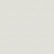 Zera Annex 12 x 24 Bianco Variation
