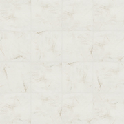 Bellina Grey Variation