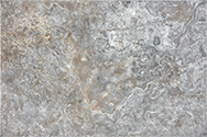 Silver Ash 16 x 24 in / 40.6 x 61 cm Chiseled & Brushed