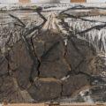 """Anselm Kiefer: Et la terre tremble encore, d'avoir vu la fuite des géants, 1982 Colore vinilico, olio, gommalacca, sabbia e argilla su tela Credit: Centro Conservazione e Restauro """"La Venaria Reale"""""""