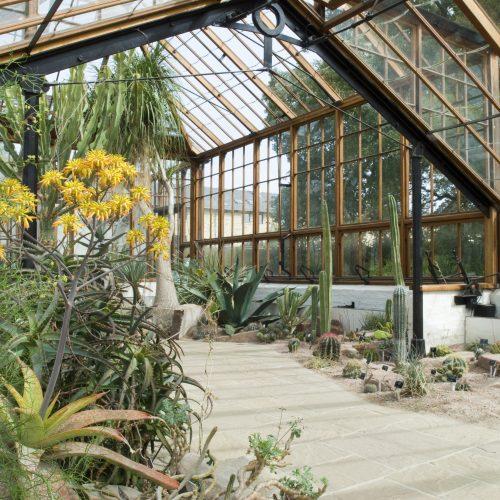 The Glasshouse Range