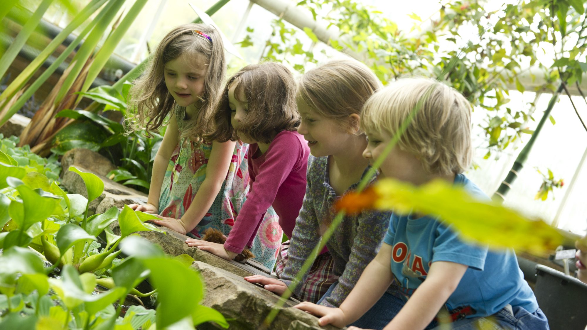 Children in the Glasshouse Range.
