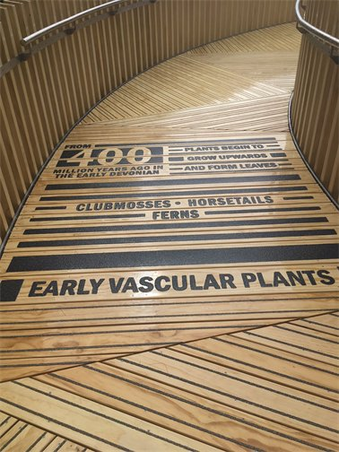 As you walk up the path, there are written facts on the floor about plant innovations.