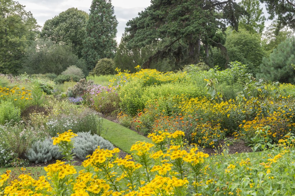 The Systematic Beds in summer.