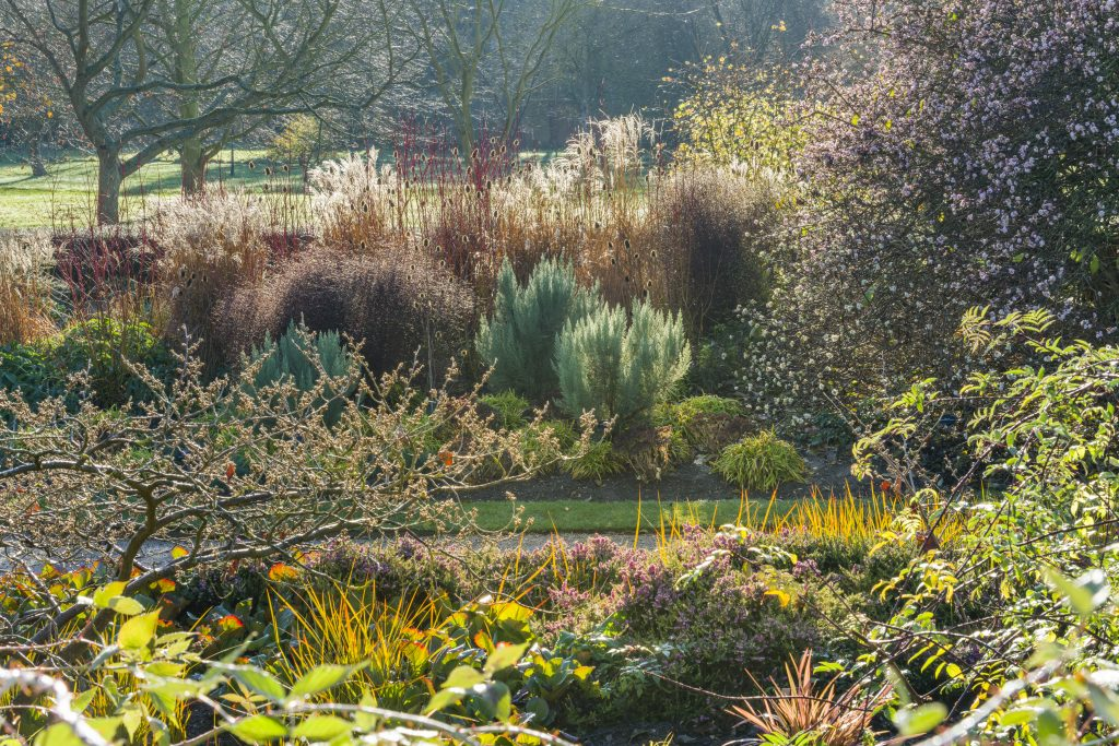 New Zeland plantings in the Winter Garden 2018