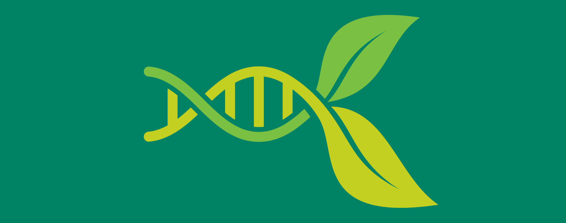 Gene expression. The mechanics of plant development.