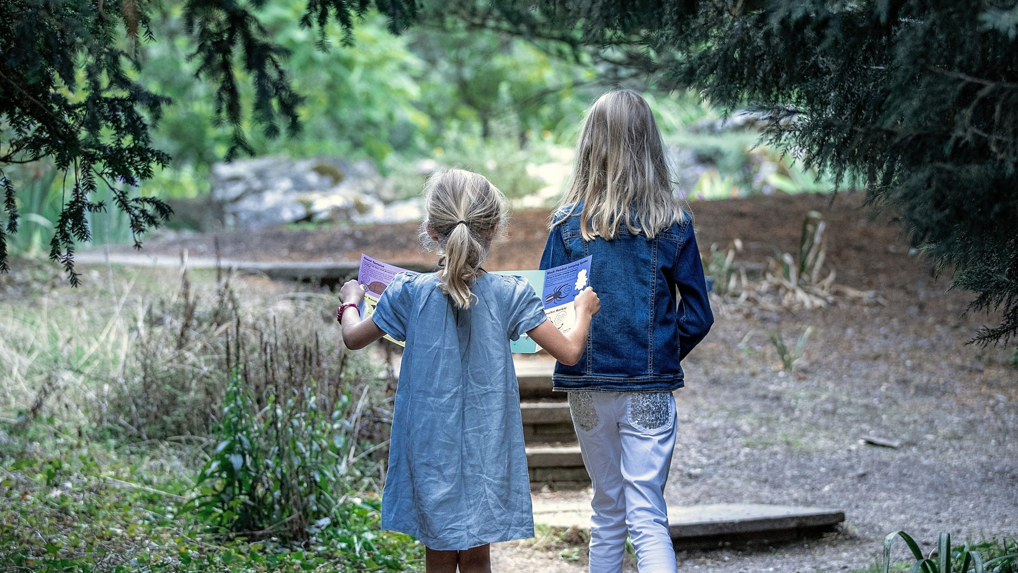Children entering the rock garden, via Lynch Walk.