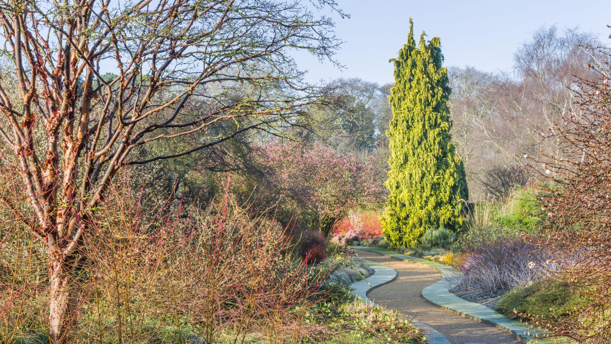 Vista through the winter garden.