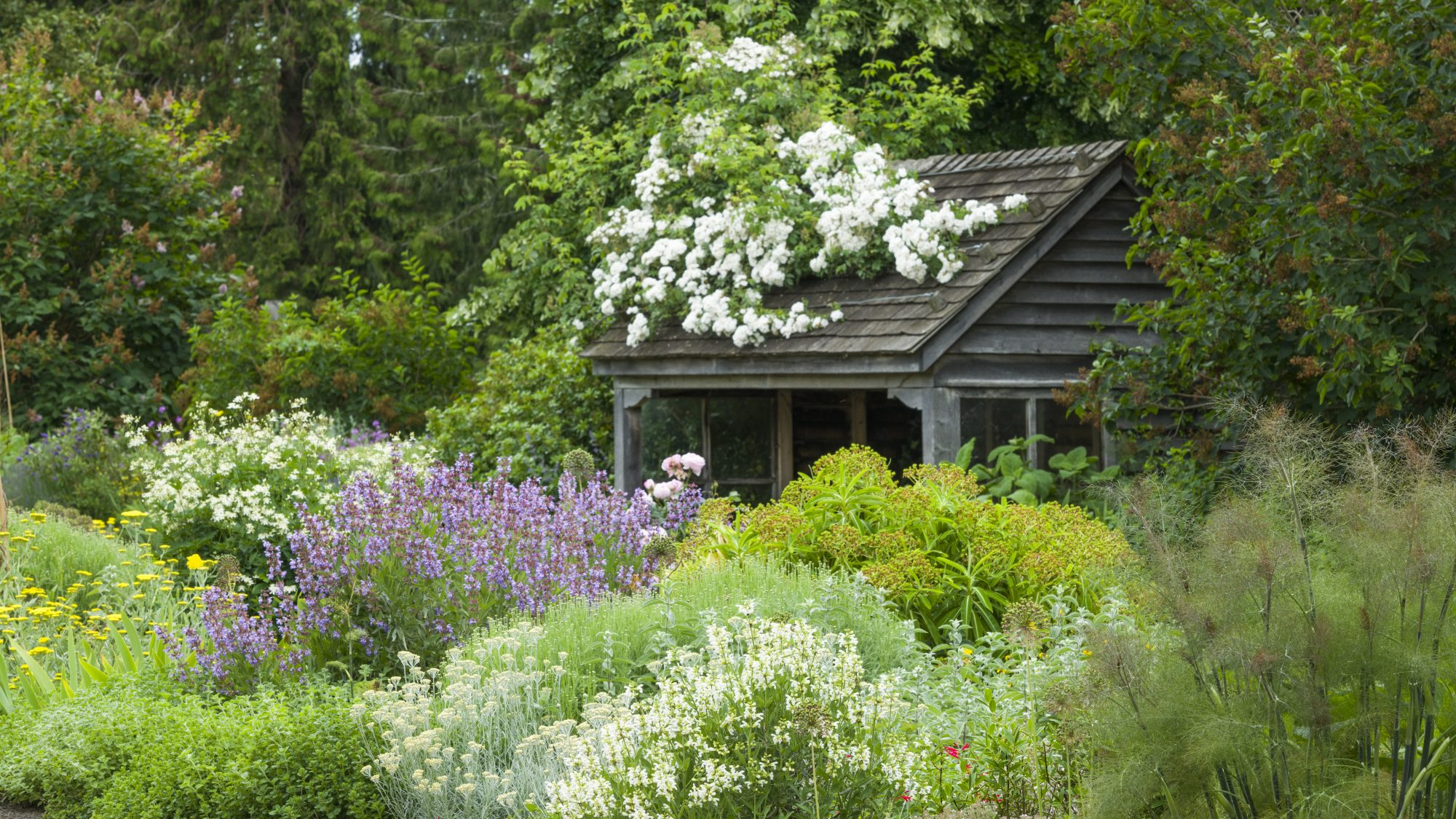 The wooden shelter in the Scented Garden, tucked away behind a flurry of pastel flowers.