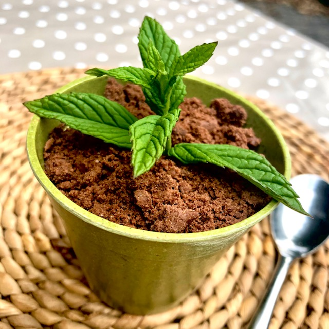Image of chocolate mint dessert that resembles mint plant growing in soil
