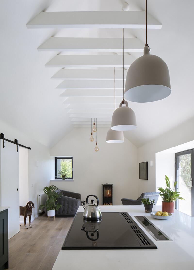 Cornival-Interior-Kitchen-Dog-Cottage-Refurbishment-Extension-Aberdeenshire-05.jpg