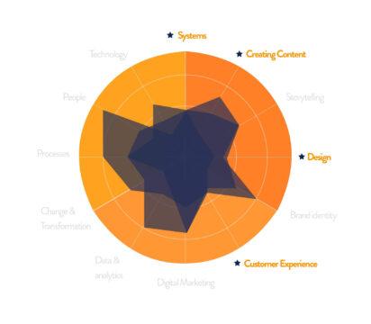 Content skillset voor teams