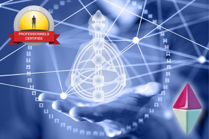 Programme de formation professionnelle d'analyste niveau 3