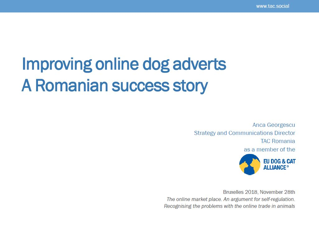 Improving online dog adverts: A Romanian success story