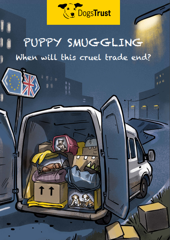 Puppy Smuggling - when will this cruel trade end?