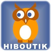 Hiboutik_logiciel_de_caisse_icone