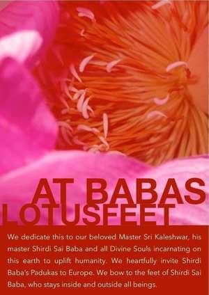 Collage mit Bildern von Baba Statuen in Privathaushalten in Europa - DOWNLOAD