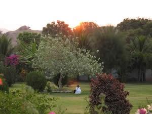 アシュラムの庭を照らす朝日