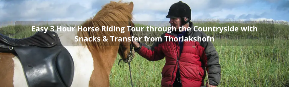 Easy 3 hours horse riding tour