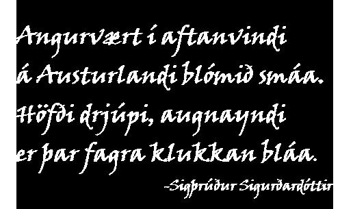 Forsíða