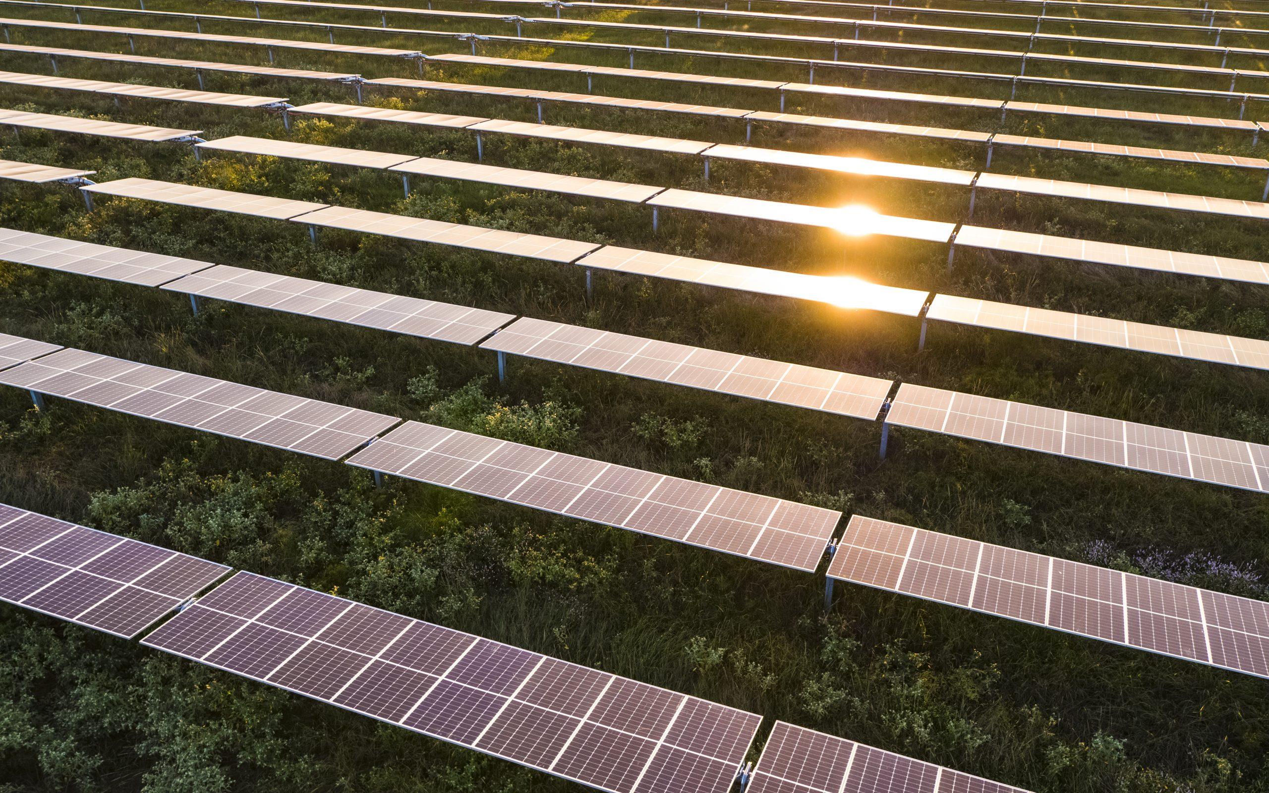 Impact-Solar-Oct-2020-28-scaled