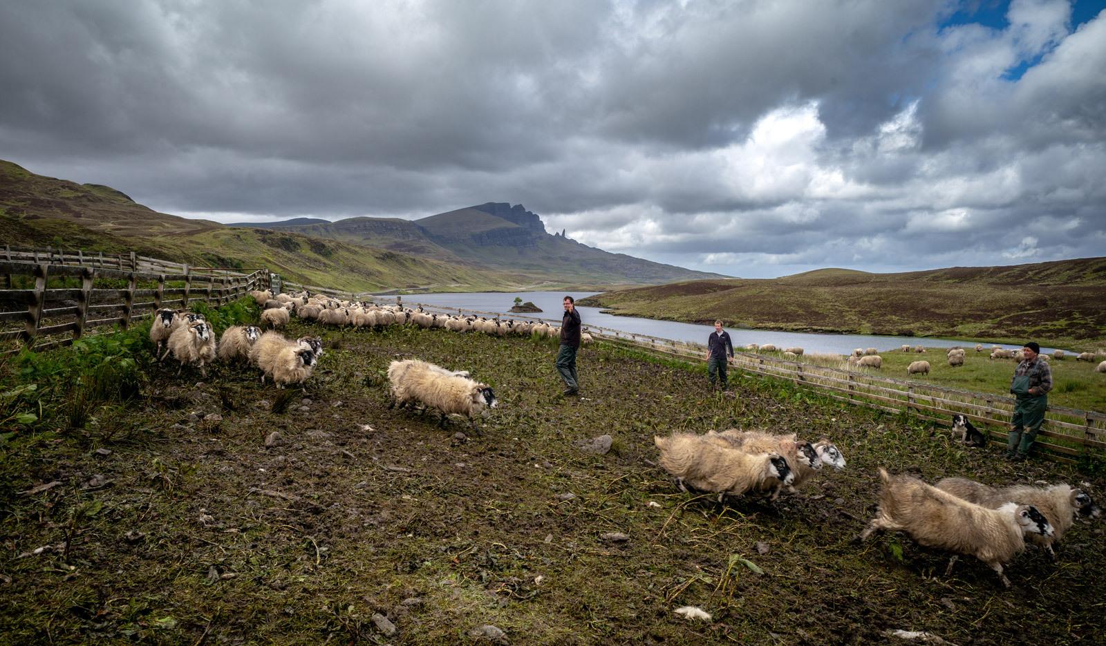 an-storr-shepherds.jpg
