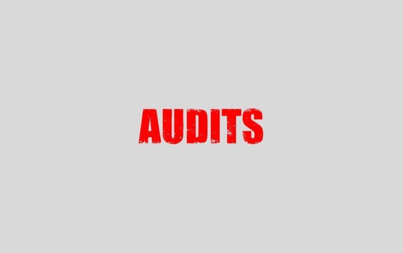 Audit thumb