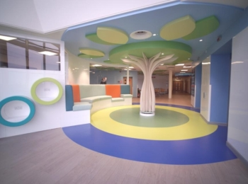 THE PSYCHOLOGY OF COLOUR AT ROYAL ABERDEEN CHILDREN'S HOSPITAL